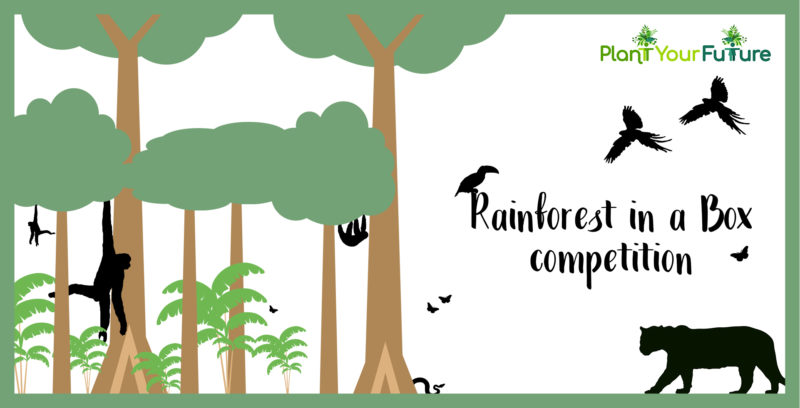 Press Release: Plant Your Future launches 'Rainforest in a Box' competition