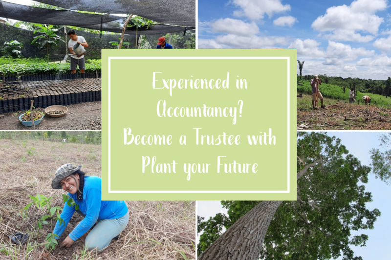 Treasurer Opportunity: Become a Trustee of Plant your Future